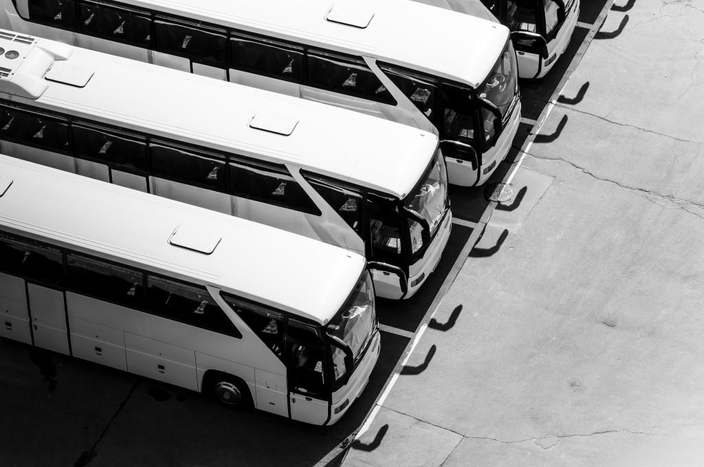 fleet buses